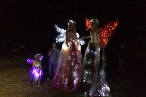 light-faeries-bc